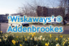 Click here to see our 'Wiskaways' at Addenbrookes Hospital, Cambridge