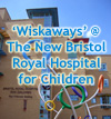 Click here to see our 'Wiskaways' at the new Bristol Royal Hospital for Children